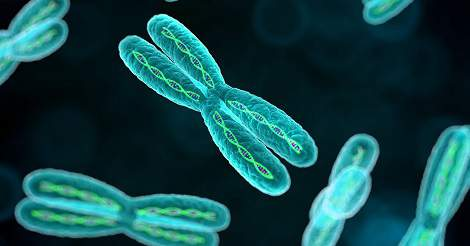Loss of Chromosome Y