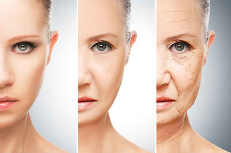 Partial Cellular Reprogramming Improves Signs of Aging - Medical News Bulletin