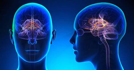 neurologic diseases Neurological diseases and disorders are those that affect the brain, including parkinson's disease and alzheimer's disease environmental factors are suspected of playing a large role in.